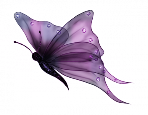 papillon crealyd17 féerique